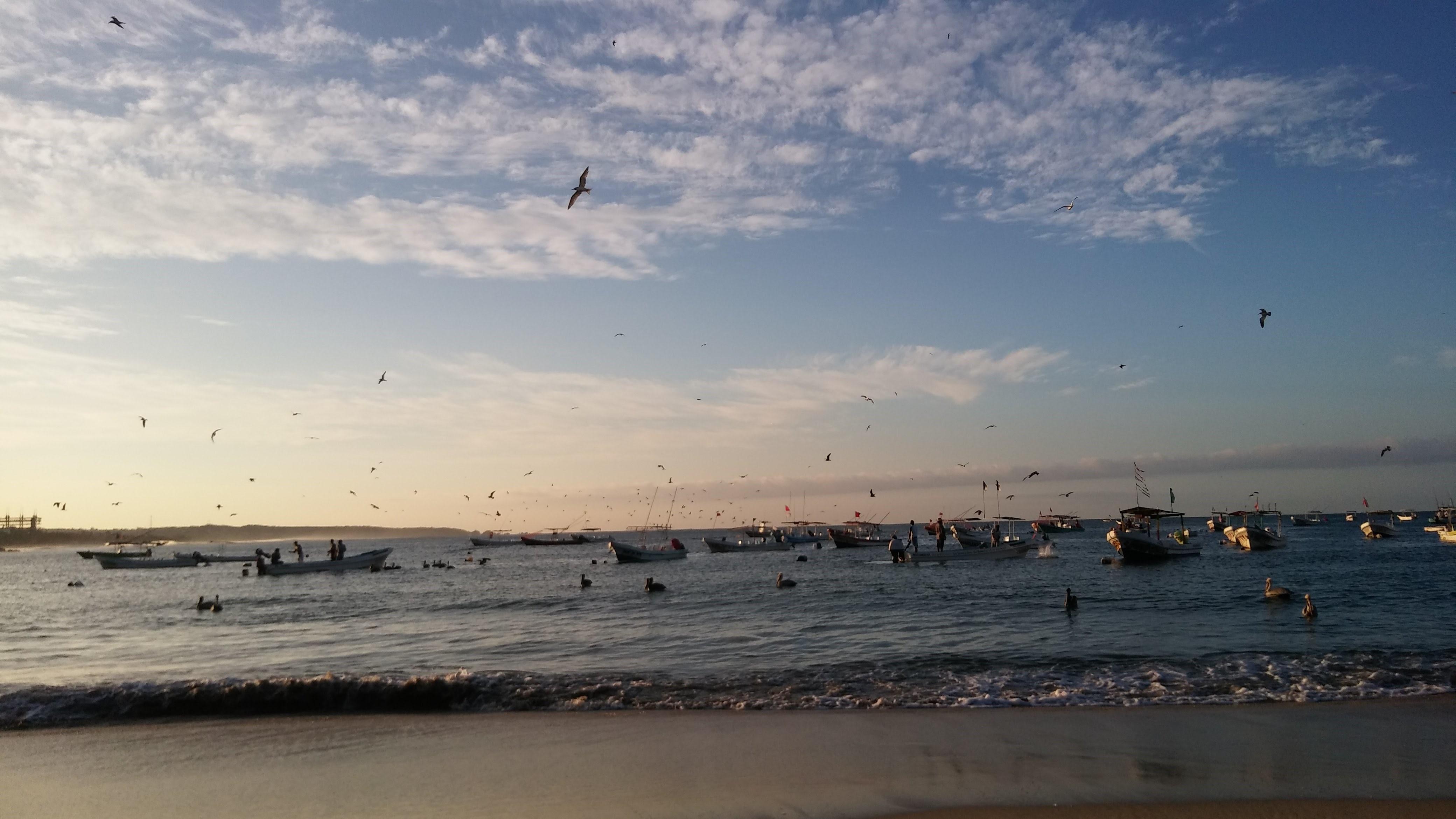 Dos playas de Puerto Escondido, Oaxaca, son riesgo sanitario: Cofepris y Samarnat