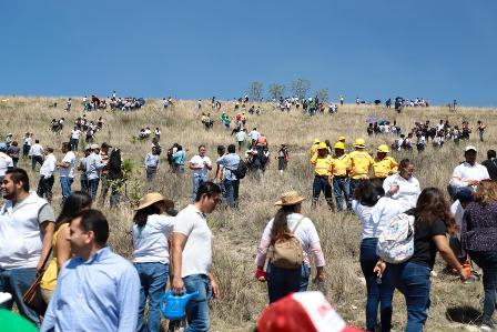 Lanzan reto para reforestar en 24 municipios de las ocho regiones del estado