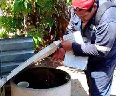 Emite IMSS medidas de prevención contra el dengue